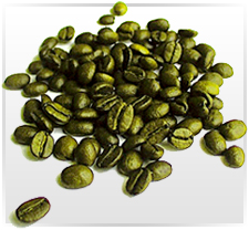 Premium Green Coffee Beans